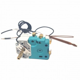 Thermostat Thermo Fagor...